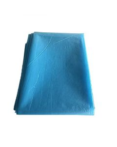 Henan Lantian Disposable Medical Bed Sheet - LTB-006 (80 x 120 cm)