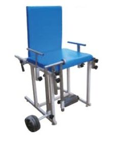Biomed Quadriceps Exercise Table (BMI-1059)