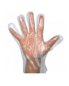 Plastic Gloves – G108_00
